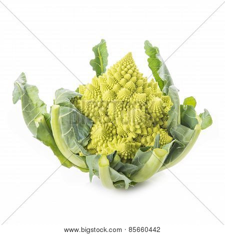 Romanesco Broccoli Vegetable Isolated On White Background