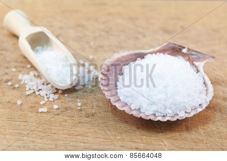 Seasalt In Shell