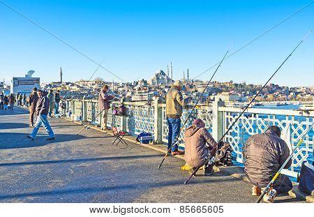 The Morning Fishing
