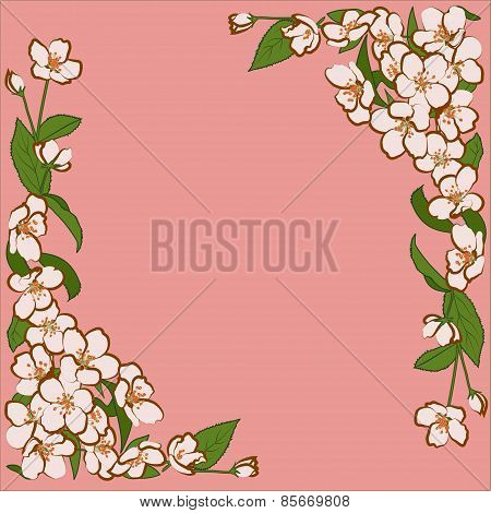 Ornament Of Pink Apple Flowers With Green Leaves
