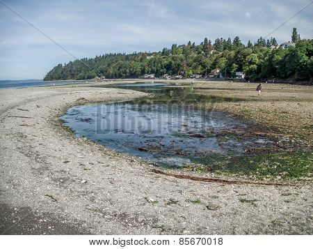 Extreme Low Tide At Des Moines, Washington