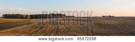 Plowed Field Panoramic Landscape