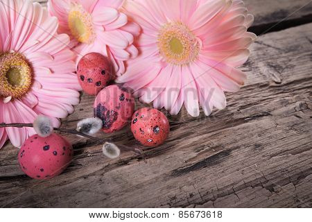 Pink Easter Eggs With Daisy Flowers