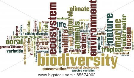 Biodiversity Word Cloud