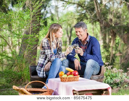 Happy couple toasting wine glasses while sitting on chairs at campsite