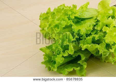 Salad Lettuce Leaves