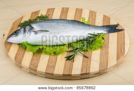 Raw Seabass