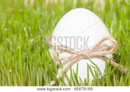 easter egg with bow knot in grass