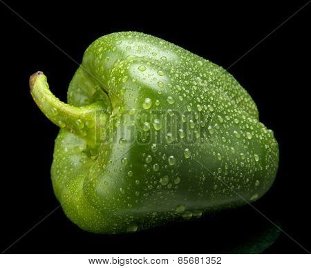 Studio Shot Of Green Bell Pepper Isolated On Black With Water Dr