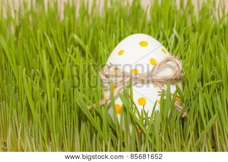easter egg with bow knot in spring grass
