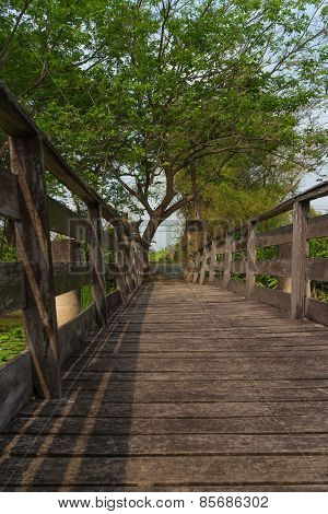 the pathway at the old wood bridge
