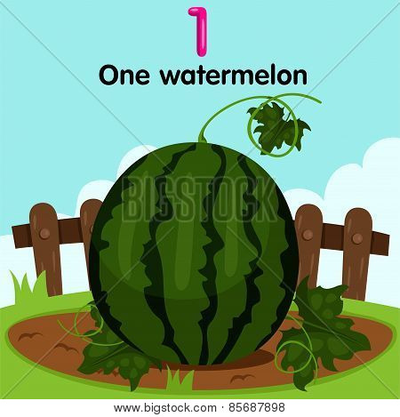 Illustrator of number one watermelon