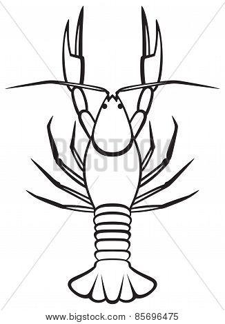 Silhouette crayfish