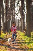 pic of dog park  - boy and dog walking in park - JPG
