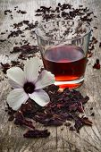 foto of hibiscus  - Hibiscus tea  - JPG