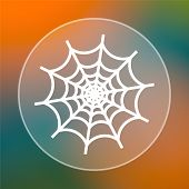 picture of spider web  - Spider web icon - JPG