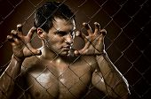 image of felons  - the very muscular handsome felon guy out of netting steel fence - JPG