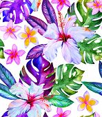 picture of bird paradise  - watercolor seamless tropical pattern with hibiscus - JPG