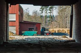 pic of tarp  - Fire wood industry seen from inside abandoned building - JPG