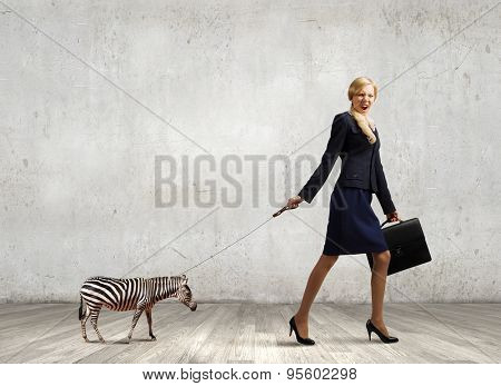 Young businesswoman with suitcase walking with zebra on lead