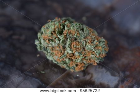 Blueberry Headband Medicinal Marijuana