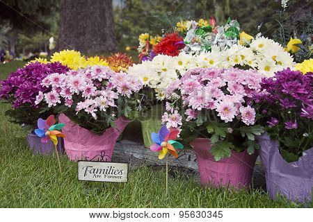 Families are Forever plaque with flowers