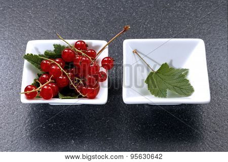 Redcurrant on stone table