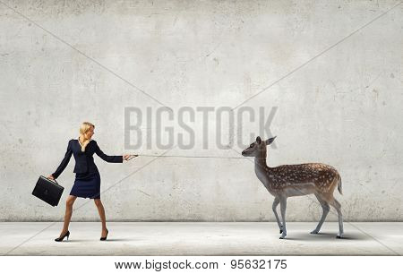 Young businesswoman with suitcase walking with deer on lead