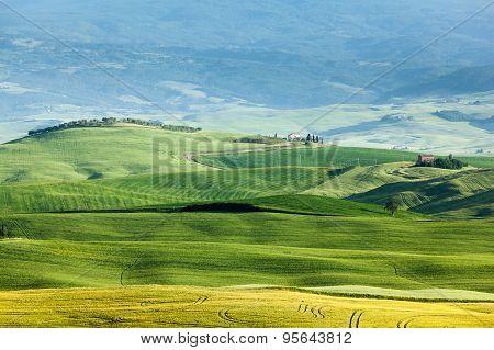 Spring Landscape Of Fields Tuscany