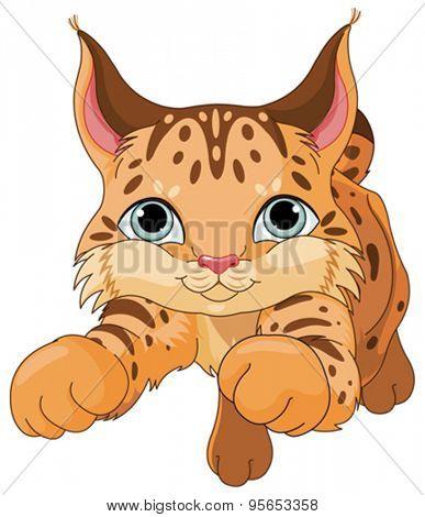Illustration of cute lynx