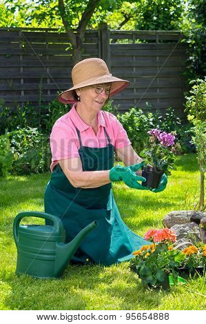 Woman Admiring A Potted Plant