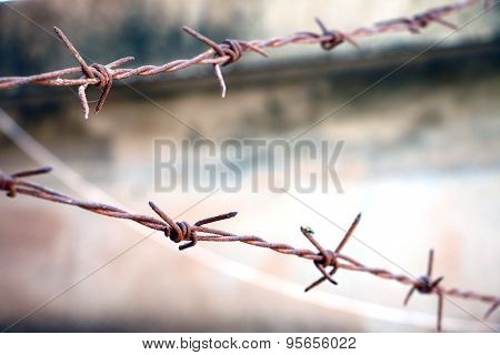 rusty barb wires