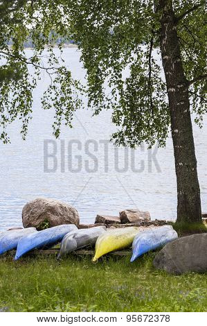 Canoes In Row Under The Tree