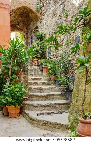 Alley In Italian Old Town Liguria Italy