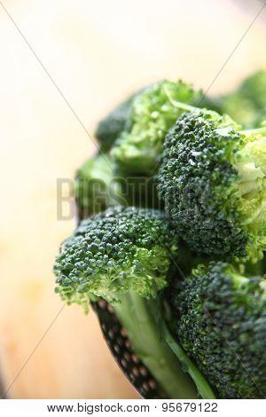 Fresh broccoli closeup