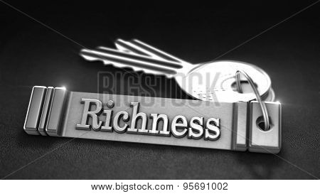 Richness Concept