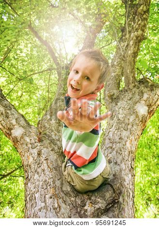 a happy boy climbing a tree during summer time with his hand out