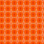 stock photo of cosmos flowers  - Orange cosmos seamless pattern background - JPG