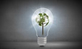 stock photo of ecology  - Ecology concept with green tree inside of light bulb - JPG