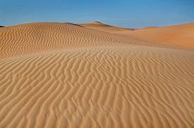 image of sahara desert  - Dunes in the desert - JPG