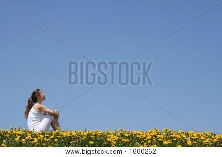 Girl Sitting In Dandelion Field