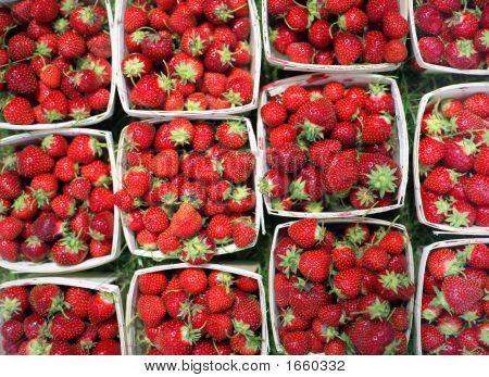 Linear Strawberries