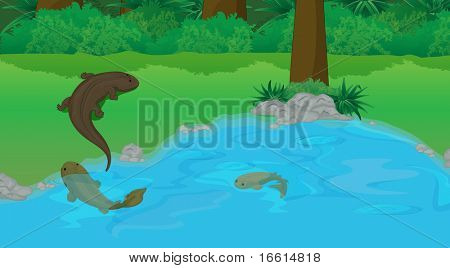the start of evolution from water to land illustration