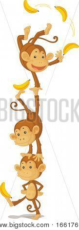an illustration of three monkeys performing tricks