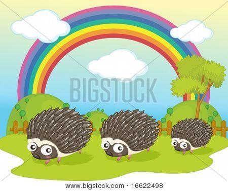 illustration of hedgehog on rainbow background