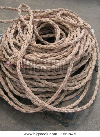 Marine Cord
