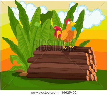 Cockerel standing on pile of logs