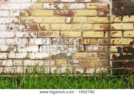 Old Wall And Fresh Grass