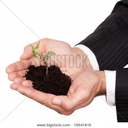 life in hands