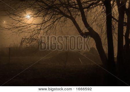 Nightmare Evening